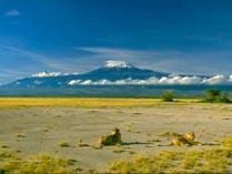 Гора Калиманжаро в Африке 03