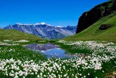 Баварские Альпы