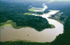 Река Амазонка 02