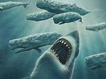Акула мегалодон 01