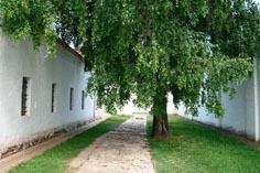 Спасо-Евфимиев мужской монастырь, тюремный двор летом, Суздаль 20