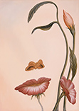 Женщина - Цветок