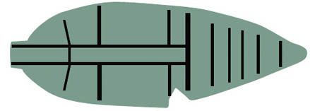 Эскиз рангоутов ковчега
